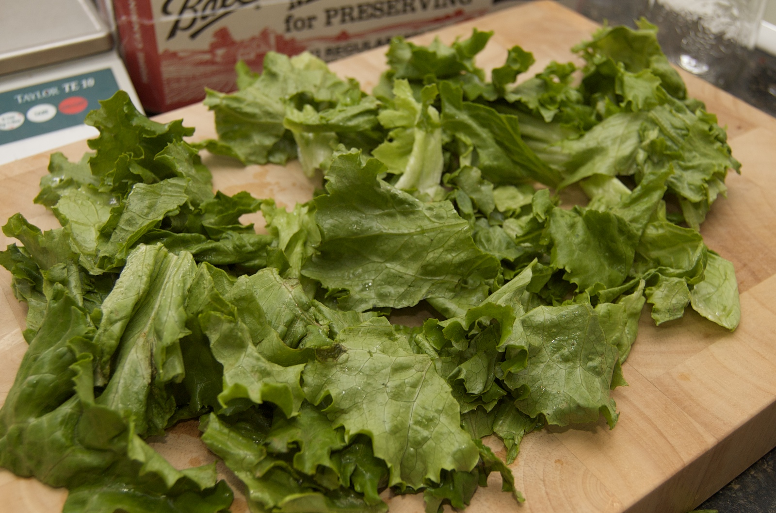 http://blog.rickk.com/food/2010/04/08/salad2.jpg