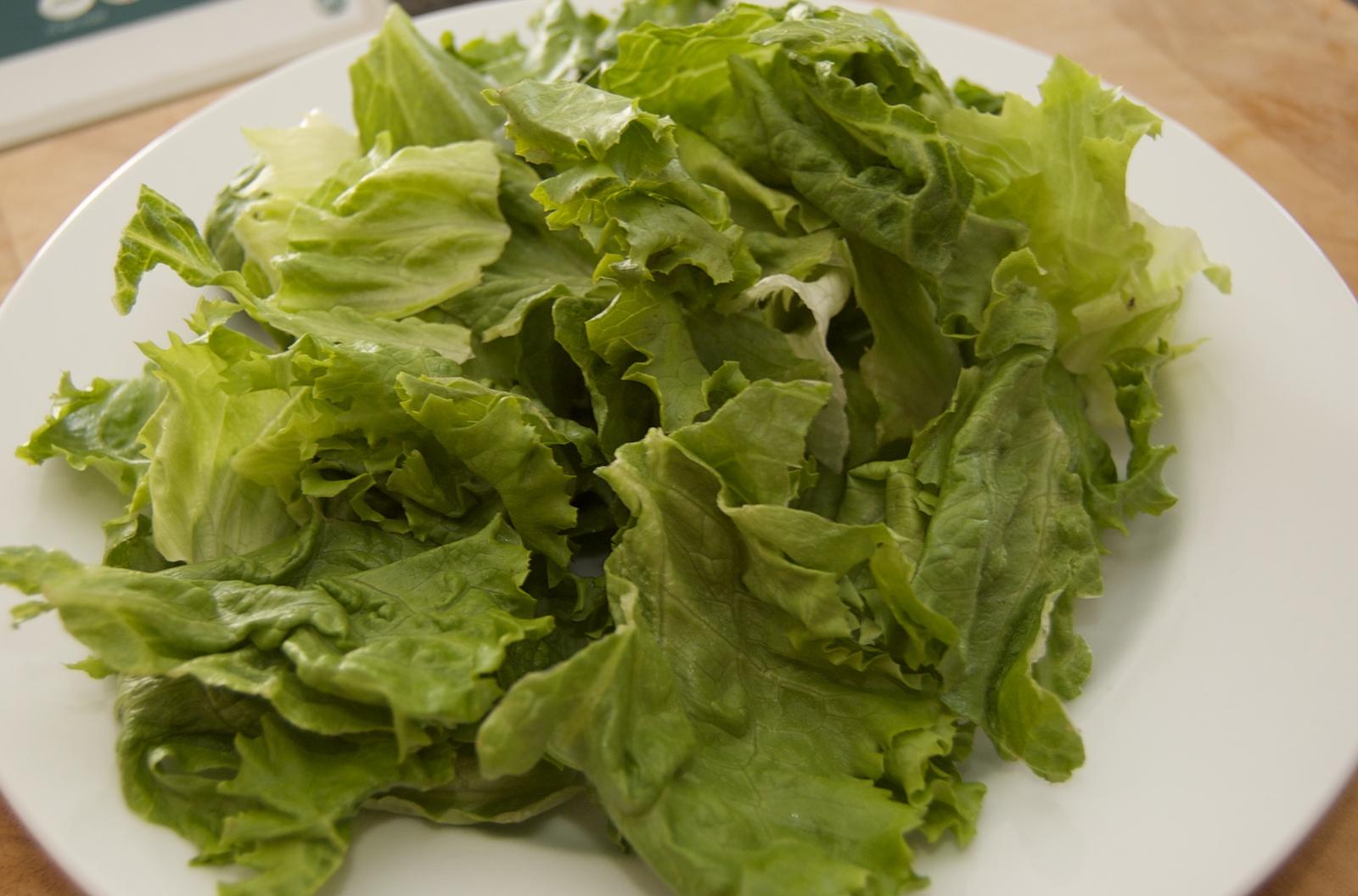 http://blog.rickk.com/food/2010/04/08/salad4.jpg