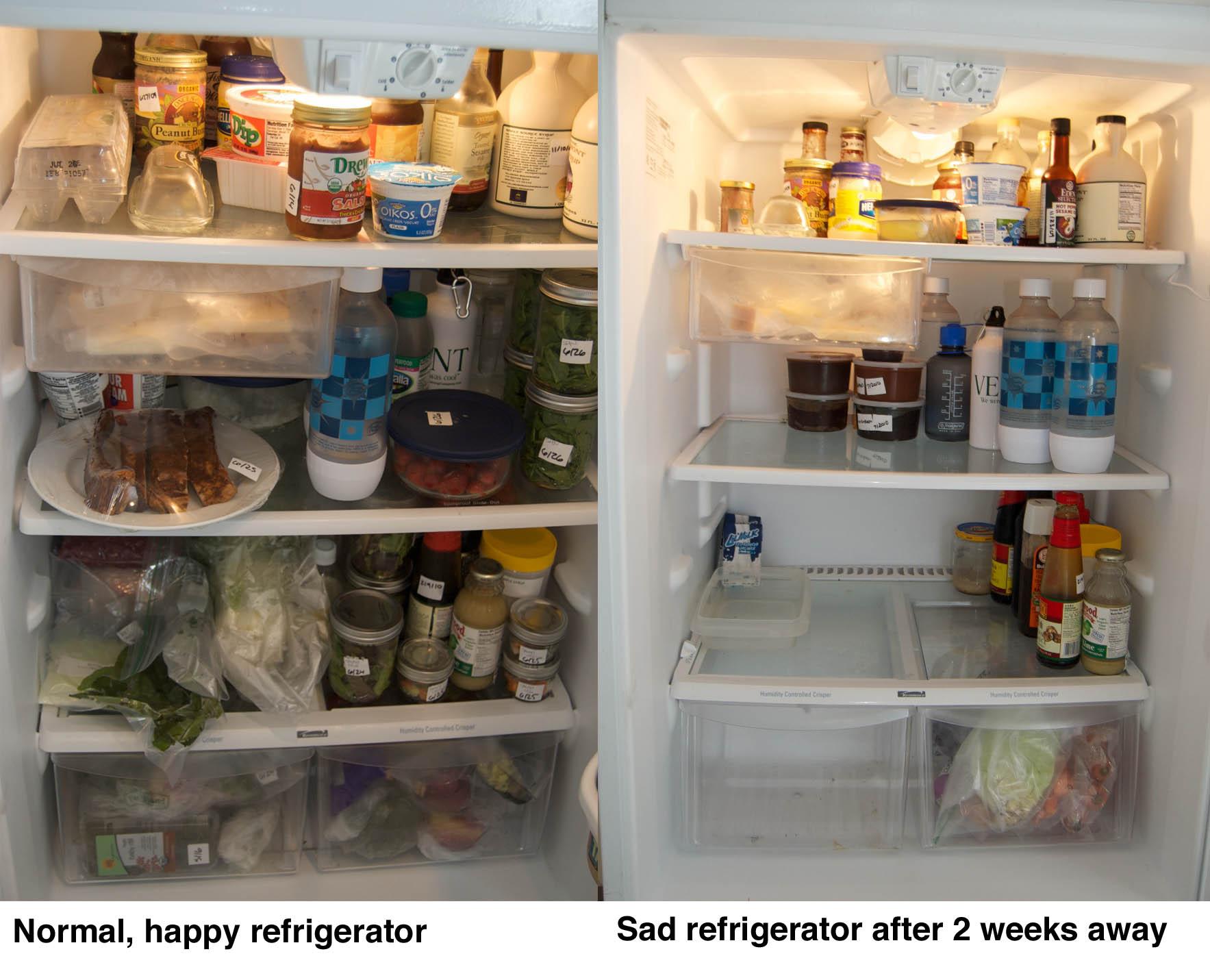 http://blog.rickk.com/food/2010/09/07/refrigerator.jpg