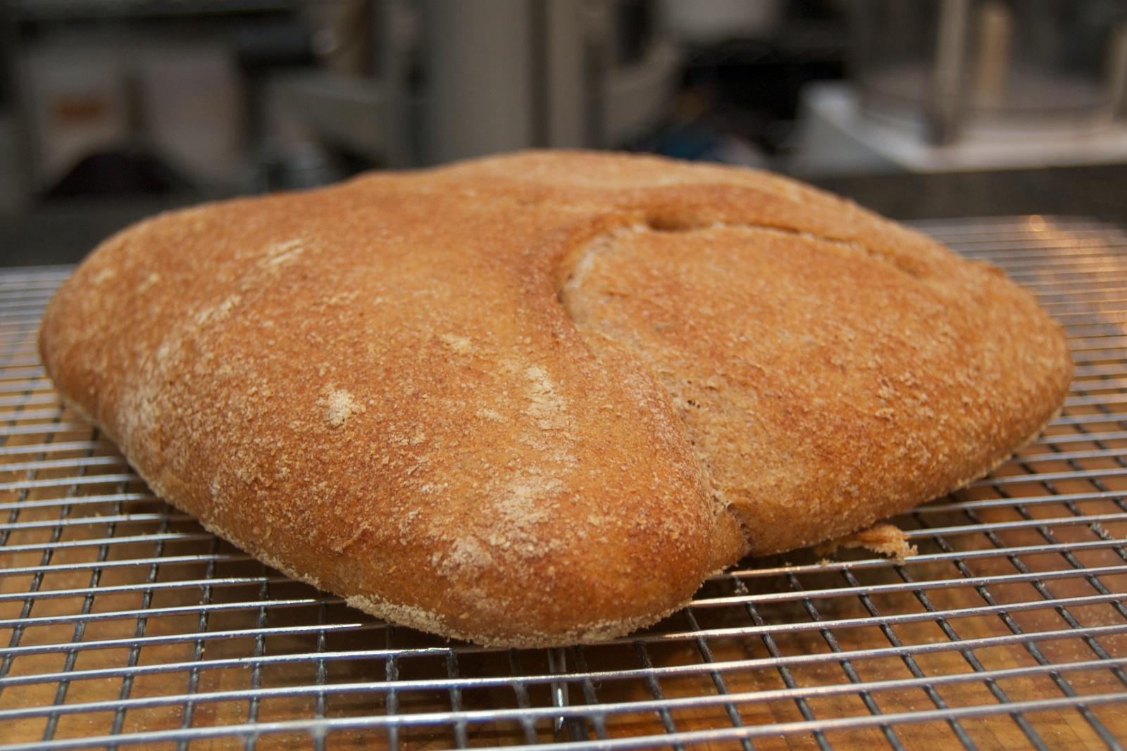 http://blog.rickk.com/food/2011/01/15/ciabatta4.jpg