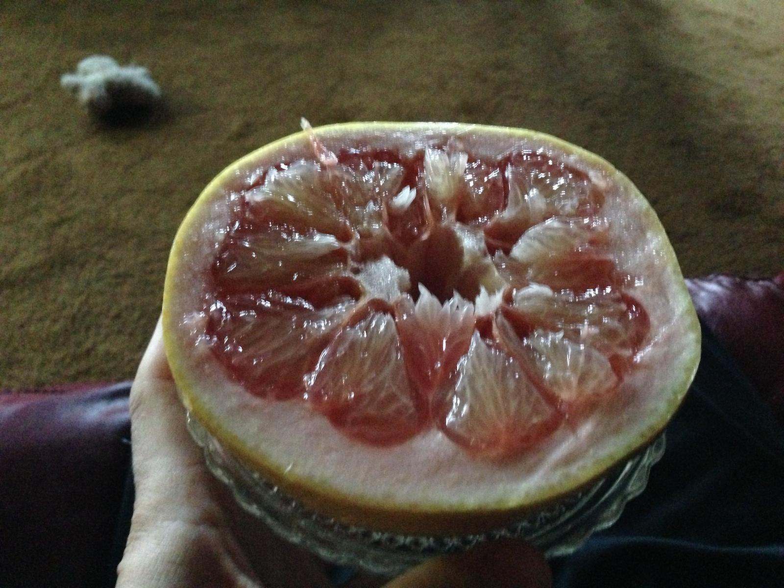 http://blog.rickk.com/food/2012/11/23/ate.2012.11.22.b1.jpg