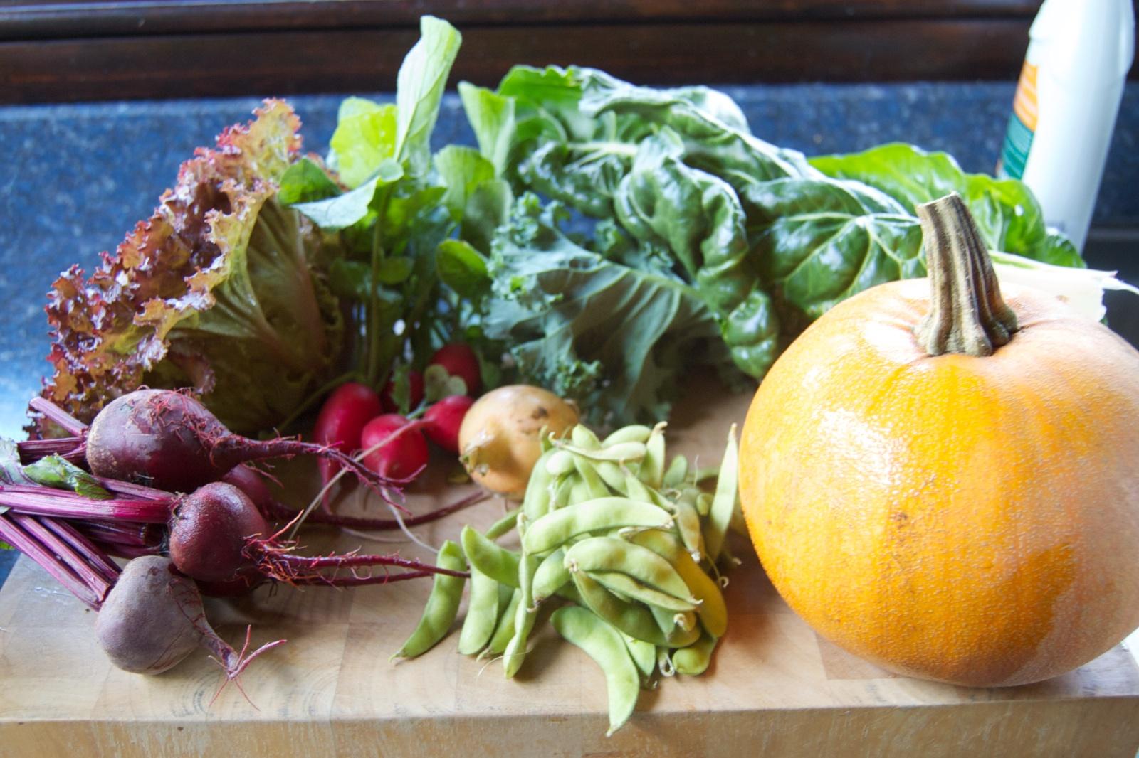 http://blog.rickk.com/food/2014/09/24/csa.2014.16.1.jpg